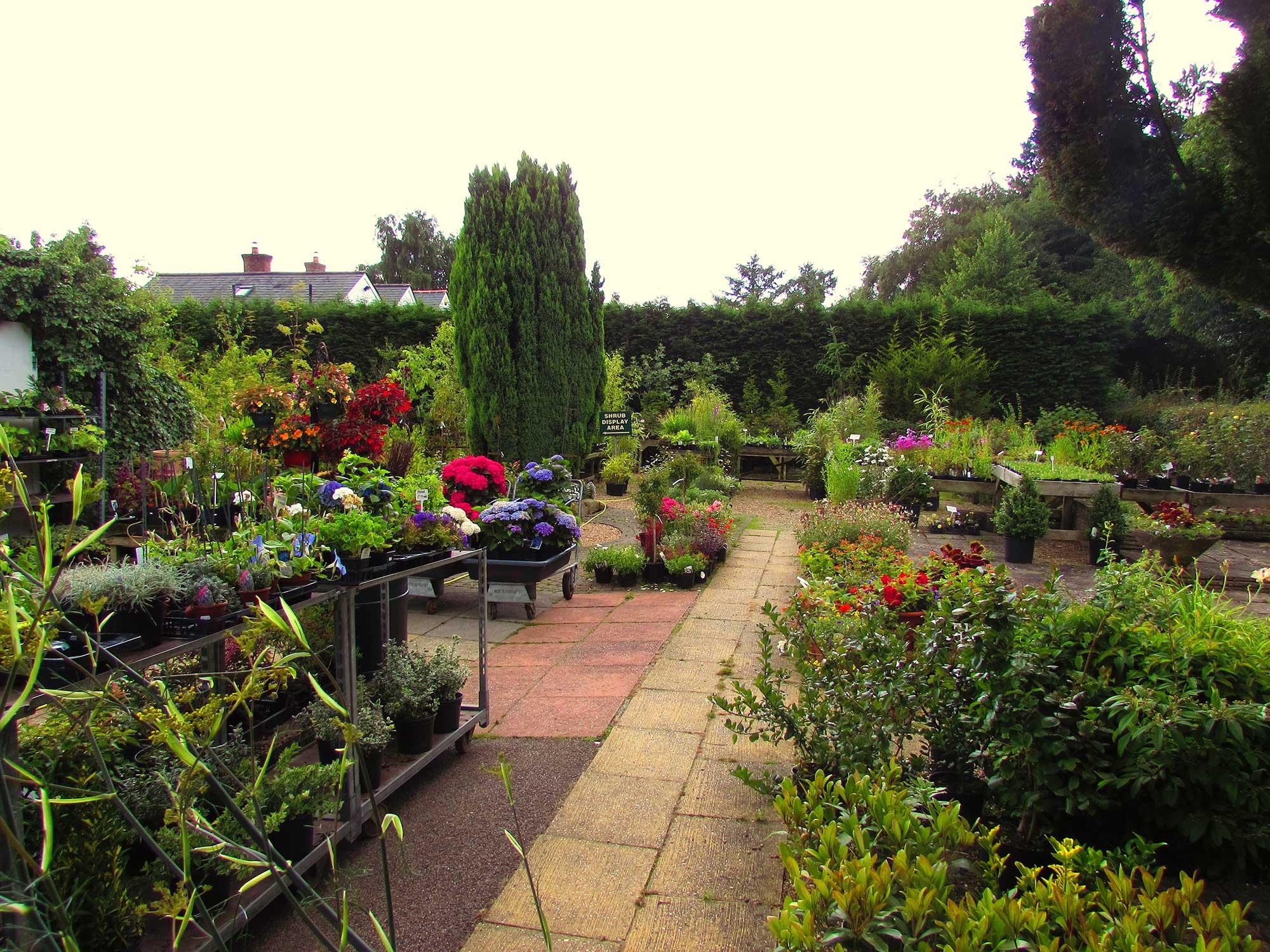Garden Centre: Plants, Trees & Supplies